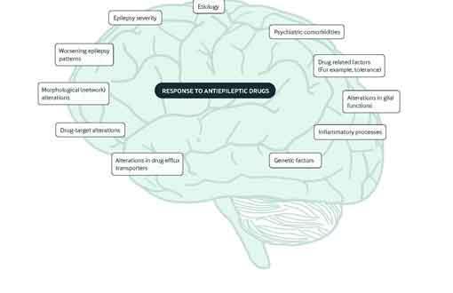 epilepsysota