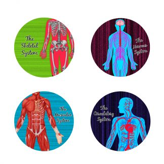 Anatomy Glass Coasters set of 4