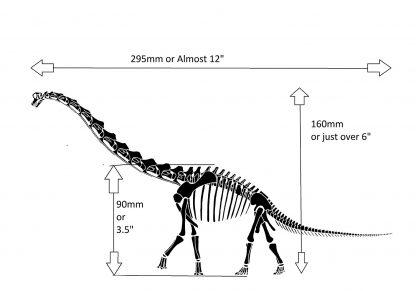 Diplodocus laptop decal measurements