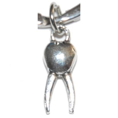 Dentist Tooth Charm